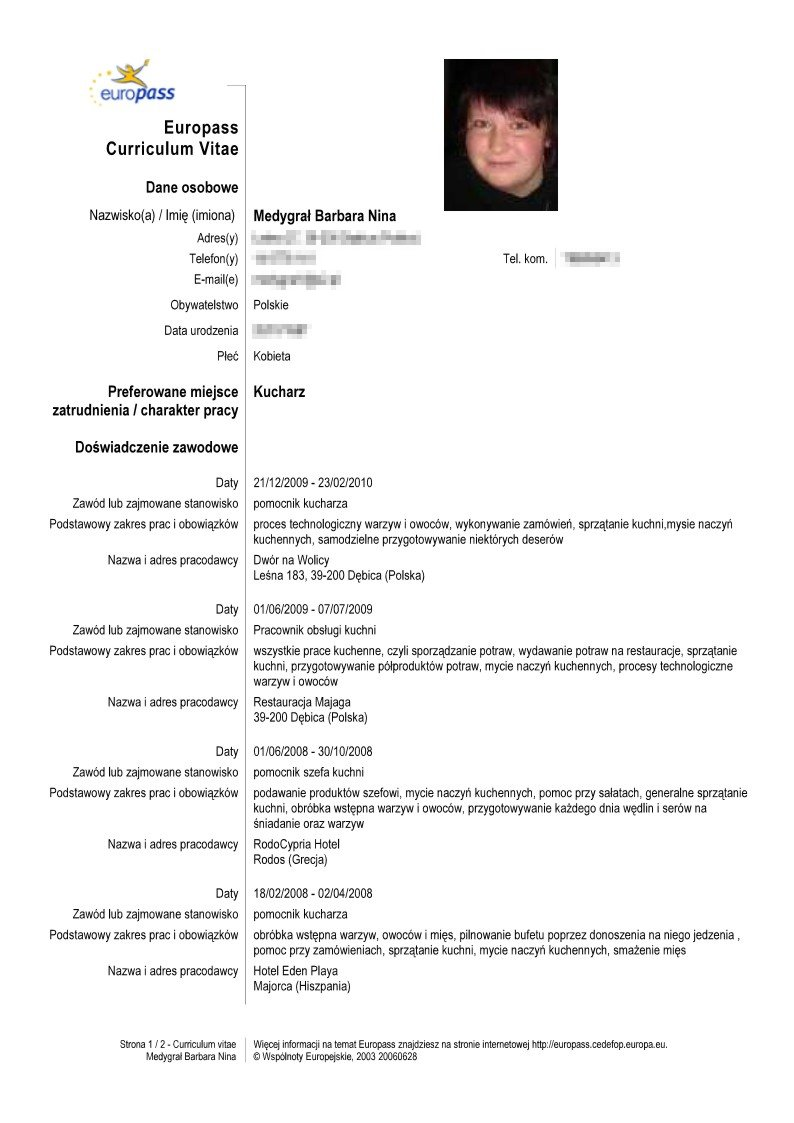 example resume  curriculum vitae exemple in romana